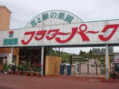ibaraki-flowerpark1.JPG