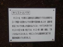 ibaraki-flowerpark5-2.JPG