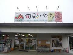shunsai-yachiyo1.JPG