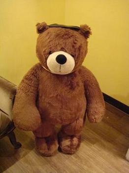 teddy-in-seoul1.JPG